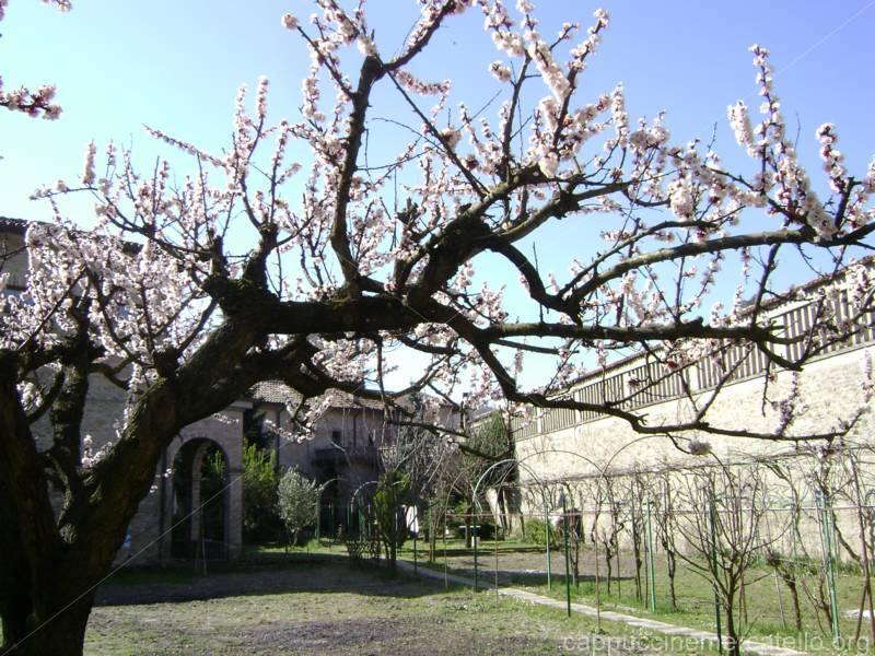 primavera monastero 2017) (13)